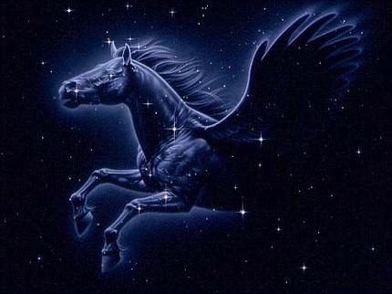 Constellation Pegasus1 Who Discovered Constellation Pegasus