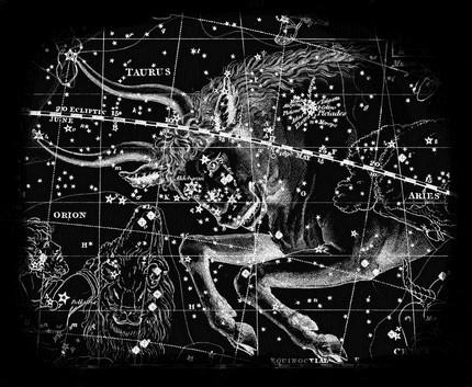 onstellation Taurus Who Discovered Constellation Taurus